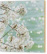 White Cherry Blossoms Trees Wood Print