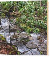 White Oak Run In Spring Wood Print by Thomas R Fletcher
