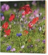 Wild Flowers And Red Poppies Wood Print