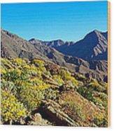 Wildflowers On Rocks, Anza Borrego Wood Print