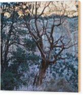 Winter At Grand Canyon Wood Print