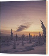 Winter Evening Landscape With Forest, Sunset And Cloudy Sky.  Wood Print