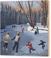 Winter Fun At Bowness Park Wood Print