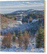 Winter Wonderland In Central Scotland Wood Print