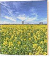 Yellow Fields Of Summer Wood Print