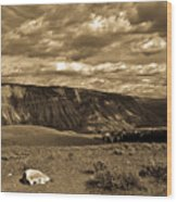 Yellowstone Sky Wood Print