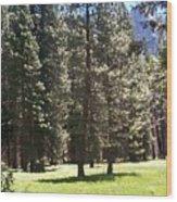 Yosemite Valley Floor Wood Print