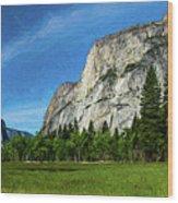 Yosemite Valley Meadow Panorama Wood Print