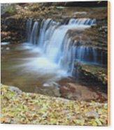 Zion Autumn Foliage Waterfall Wood Print