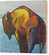 Twenty Below - Bison Wood Print