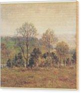 Meakinlouishenry Edenpark-we Louis Henry Meakin Wood Print