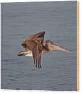 20- Pelican Wood Print