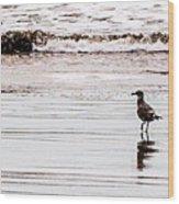 Private Beach Bastendorff Wood Print
