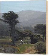 Sharp Park, Pacifica Wood Print