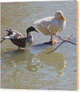 2002-ducks Wood Print