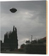 2004 Real Ufo Evidence Wood Print