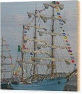 2004 Tall Ships Wood Print