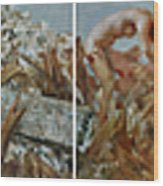 2008 05 12-2008 05 21 Wood Print