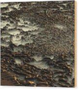 2008 5 17b Wood Print