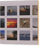 2008 Calendar Back Of Gulf Views Edition Wood Print