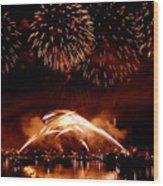 2008 Fireworks 4 Wood Print