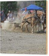 2009 Horse Pull Team A Wood Print