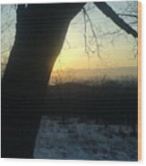 20090322 36 In Shadow Of Tree Before Sunset Wood Print
