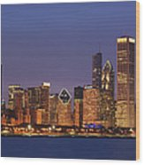 2010 Chicago Skyline Wood Print