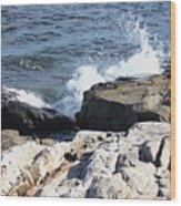 2010 Nh Seacoast 3 Wood Print