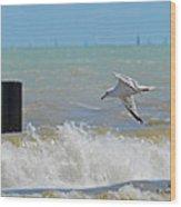 2012 08 11 Chicago Dsc_1571 Wood Print