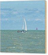2012 08 11 Chicago Dsc_1630 Wood Print