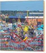2016 Florida State Fair Wood Print