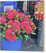 2016 Monona Farmer's Market Blue Bucket Of Dahlias Wood Print