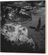 2017 Macchia Mediterranea Del Malpasso Wood Print