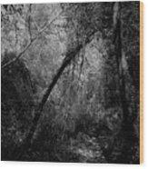 2017 Giardini Della Natura Wood Print