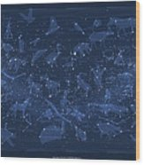 2017 Pi Day Star Chart Carree Projection Wood Print