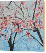 201726 Cherry Blossoms Wood Print