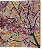 201727 Cherry Blossoms Wood Print