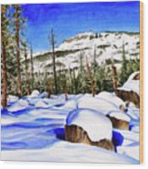 #202 Donner Summit Wood Print