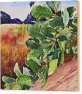#203 Blue Oak Leaves 2 Wood Print