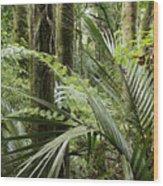 Jungle 99 Wood Print