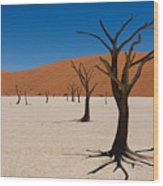 Dead Vlei Wood Print