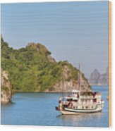 Halong Bay - Vietnam Wood Print