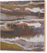 21. V2 Rustic Brown, Red And White Glaze Painting Wood Print