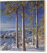 211257 Snow On Tree Sides Lake Tahoe Wood Print