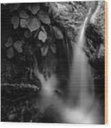 Broad River Flowing Through Wooded Forest Wood Print
