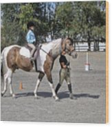 Manito Equestrian Center Benefit Horse Show Wood Print