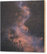 2237303004 Wood Print