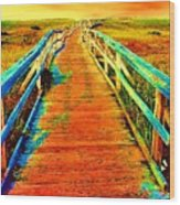 2355z  Wooden  Walkway Wood Print