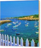 2381  Rock Harbor Wood Print